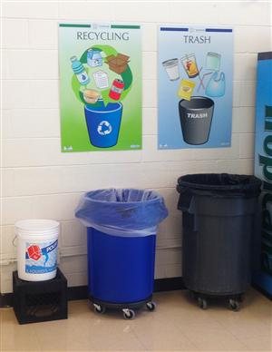 Sustainability At Dps Recycling